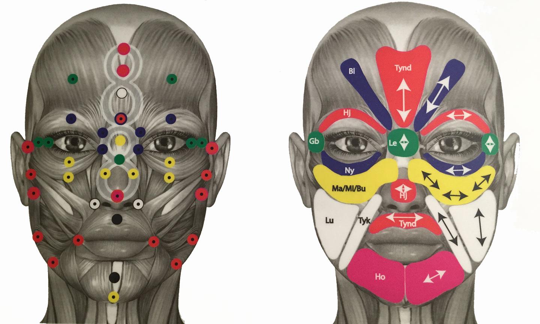 zoneterapi punkter i ansigtet